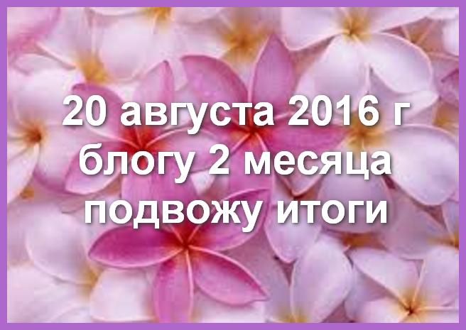 блог Любови Зубаревой итоги два 2 месяца работы