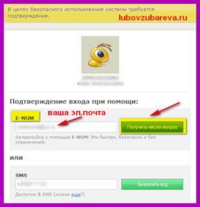 вебмани как зайти и подтвердить платеж в е нам Любовь Зубарева