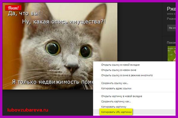 Как сделать ссылку на фото в интернете