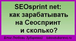 SEOsprint net как зарабатывать на Сеоспринт сколько денег можно заработать отзывы